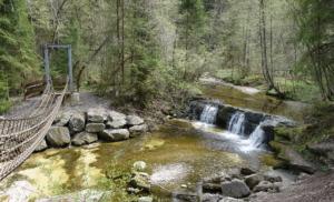 Am Wasserweg Kempter Wald Allgäu erleben - Betzigau Kulturprogramm